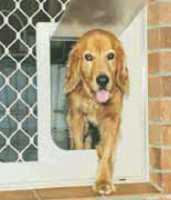 Pet Doors Perth
